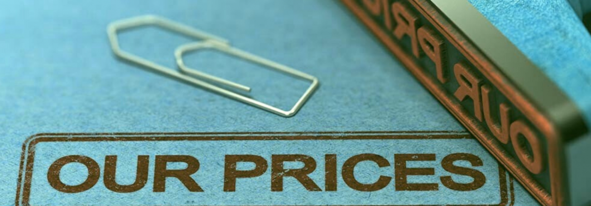 Pricing Strategy Enlite POS